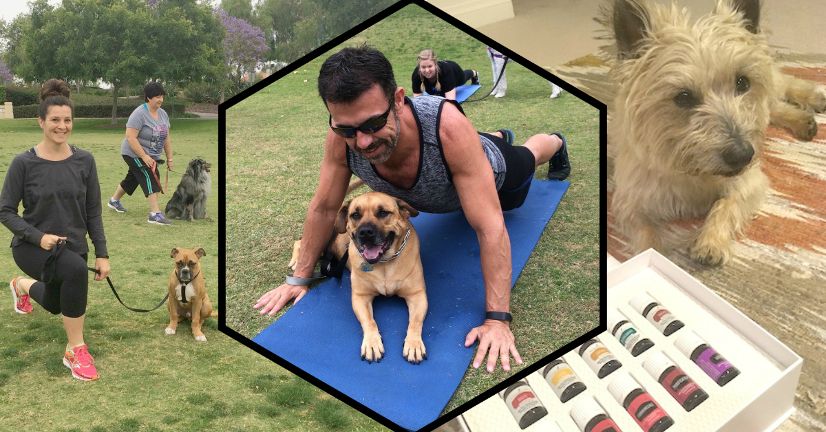 Leash Your Fitness- The Wright Way
